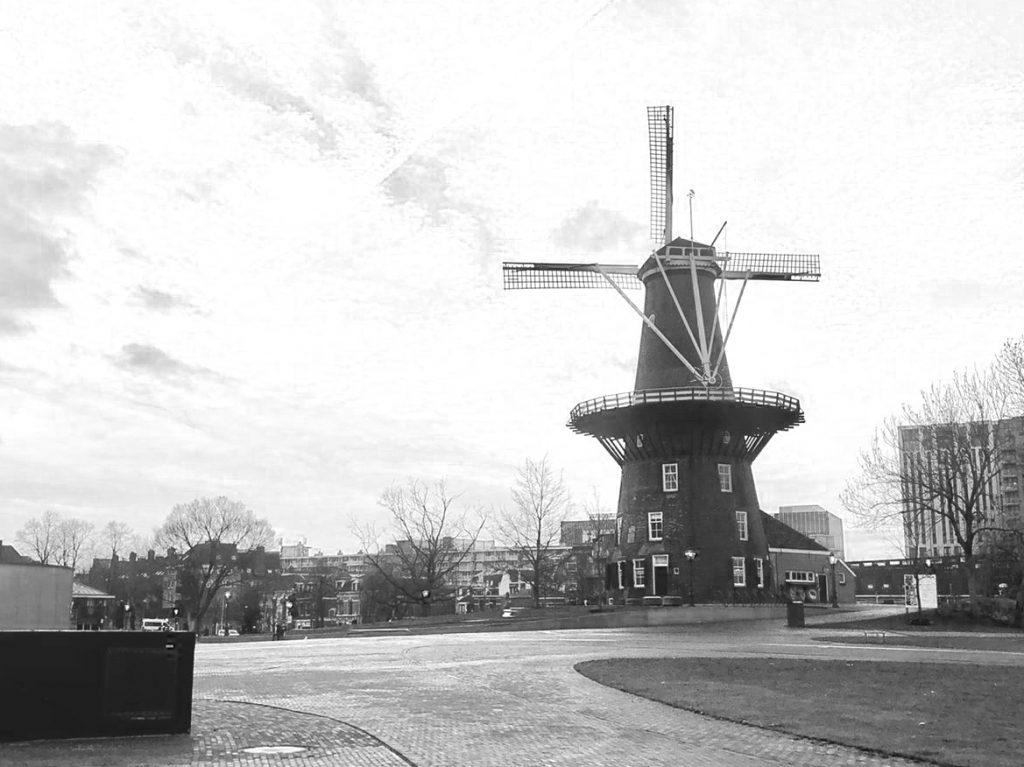 Wandelcoaching Leiden 4