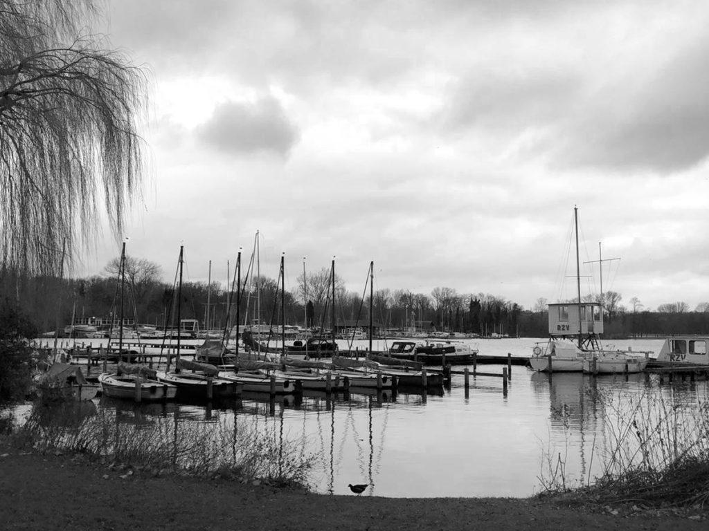 Wandelcoaching Rotterdam 2