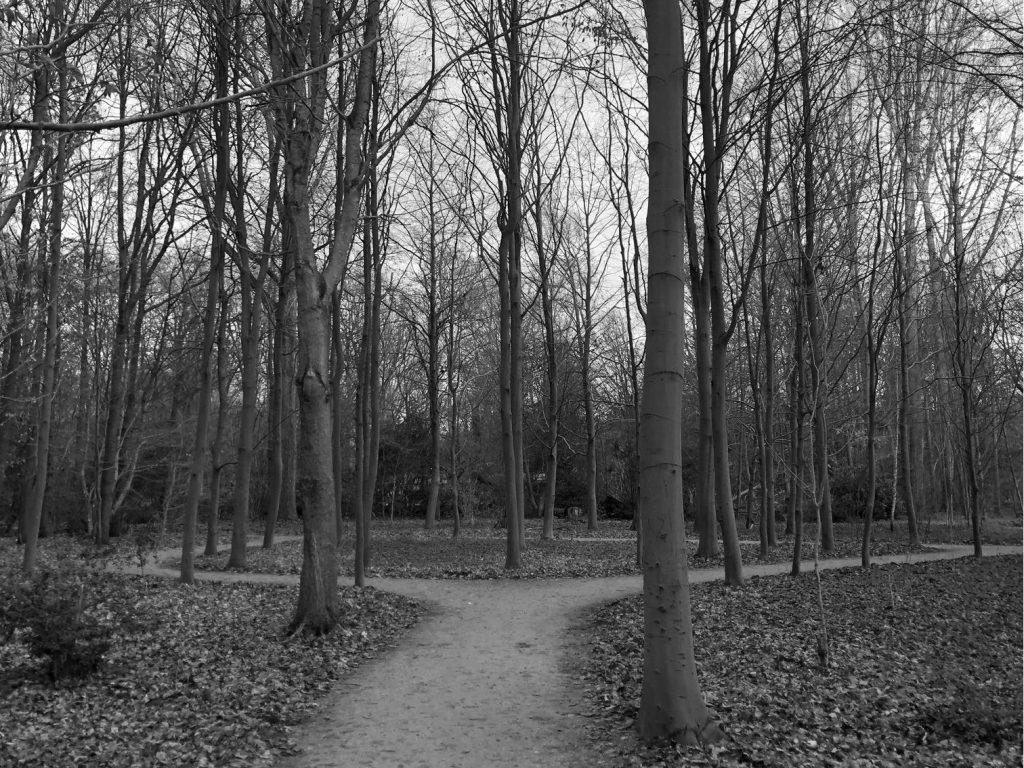Wandelcoaching pad zwart wit